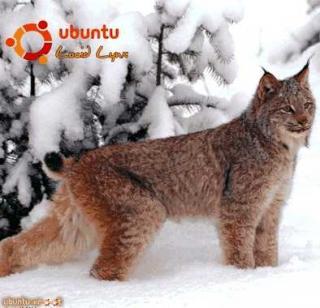 Руководство по переходу на Ubuntu 10.04 LTS «Lucid Lynx»