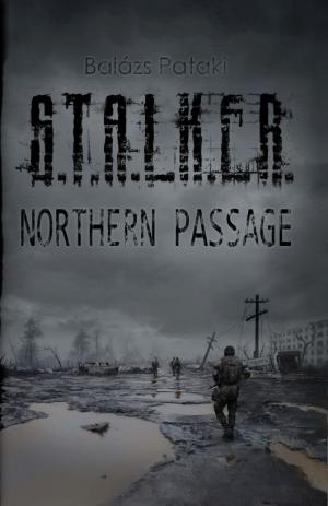 S.T.A.L.K.E.R.: Northern Passage