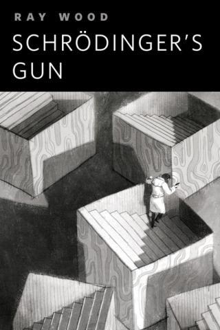 Schrödinger's Gun