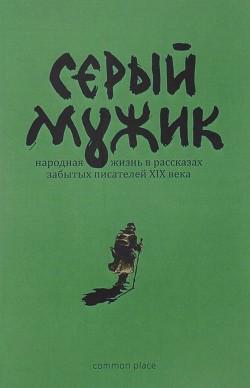 Серый мужик (Народная жизнь в рассказах забытых русских писателей XIX века)