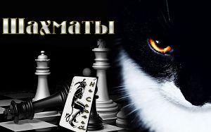 Шахматы (СИ)