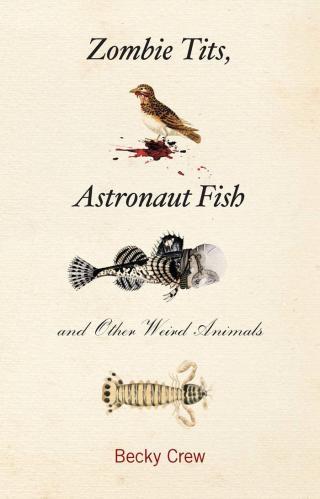 Синицы-зомби, рыбы-космонавты и другие необычные животные