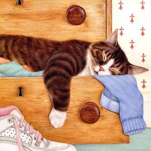 Сны в летнюю ночь, или Невероятные видения кота Архимеда