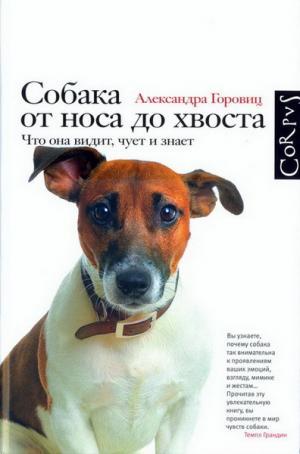 Собака от носа до хвоста. Что она видит, чует и знает