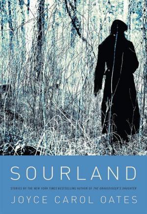Sourland [Авторский сборник]