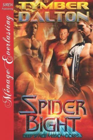 Spider Bight