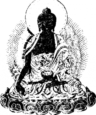 Справочник по тибетской медицине