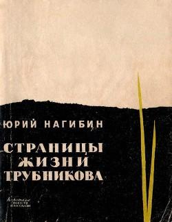 Страницы жизни Трубникова (Повесть)