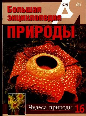 Т. 16. Чудеса природы