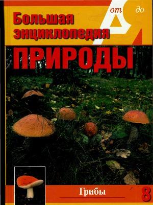 Т. 8. Грибы