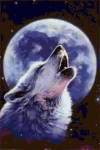 Там, где живут «ушедшие» волки