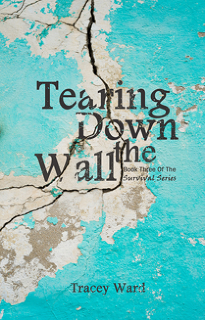 Tearing Down the Wall