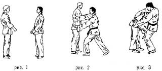 Техника выполнения приемов рукопашного боя
