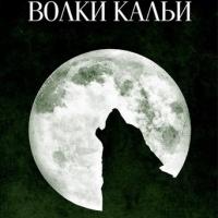 Темная башня 5: Волки Кальи