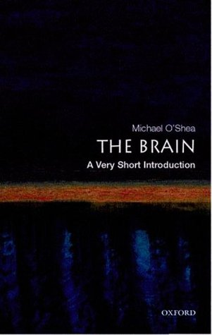 The Brain [A Very Short Introduction]