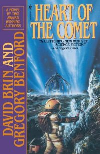 The Heart of the Comet
