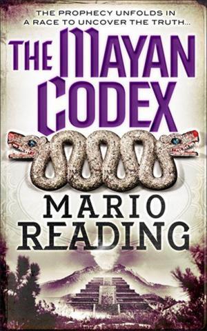 The Mayan Codex
