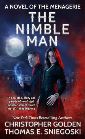 The Nimble Man