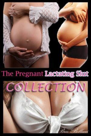 The Pregnant Lactating Slut