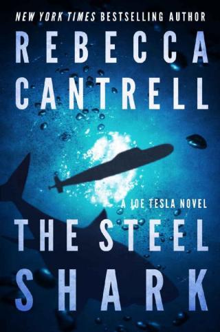 The Steel Shark