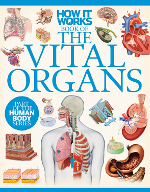 The Vital Organs