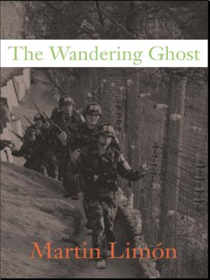 The Wandering Ghost