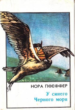 У синего Черного моря