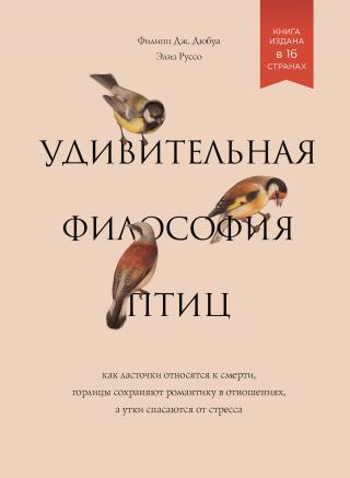 Удивительная философия птиц: Как ласточки относятся к смерти, горлицы сохраняют романтику в отношениях, а утки спасаются от стресса