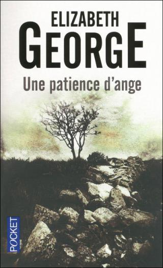 Une Patience d'ange [In Pursuit of the Proper Sinner]