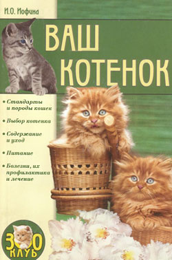 Ваш котенок [litres]
