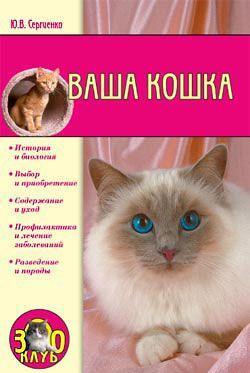 Ваша кошка