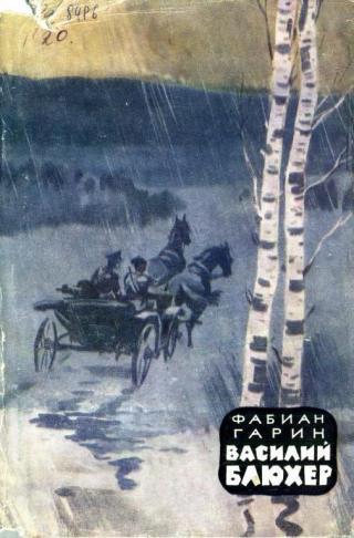 Василий Блюхер. Книга 1