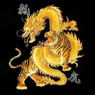 Великий Тигр и Белый Дракон (СИ)