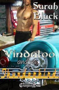 Vindaloo and the T-Bird