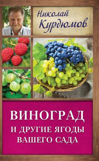 Виноград и другие ягоды вашего сада