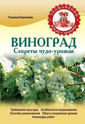 Виноград. Секреты чудо-урожая