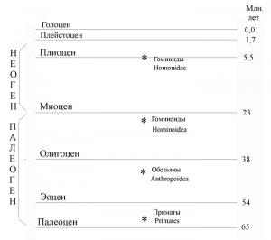 Вишняцкий Л.Б. - История одной случайности, или Происхождение человека (Наука для всех) - 2005
