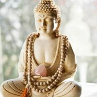 Восемь внимательных шагов к счастью. Следуя по стопам Будды