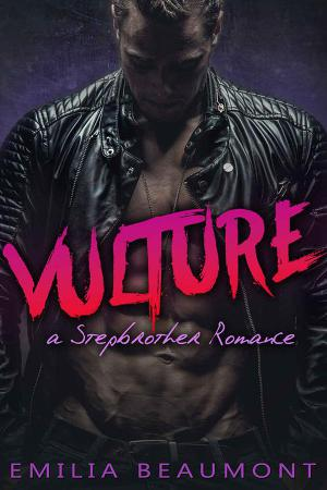 Vulture a Stepbrother Romance