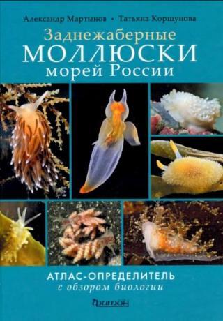Заднежаберные моллюски морей России