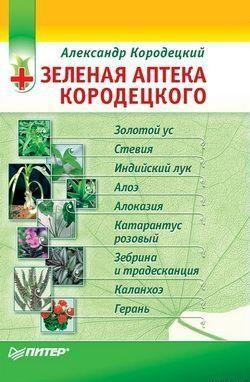 Зеленая аптека Кородецкого: золотой ус, индийский лук, стевия и другие