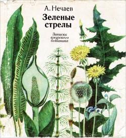 Зеленые стрелы. Рассказы амурского ботаника