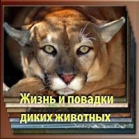 Жизнь и повадки диких животных Эрнест Сетон-Томпсон
