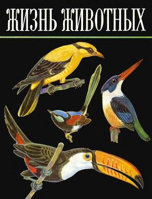 Жизнь животных.Том  5. Птицы