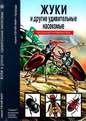 Жуки и другие удивительные насекомые