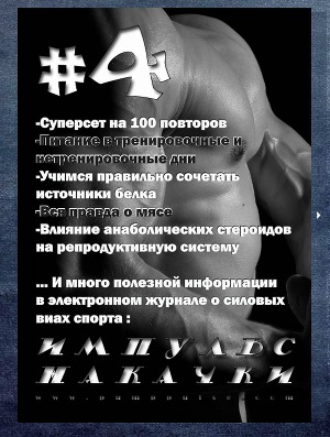 "Журнал ""Импульс накачки №4"""