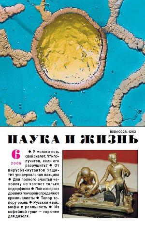 """Журнал """"Наука и Жизнь"""" 2009 №6"""