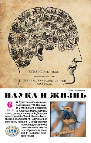 """Журнал """"Наука и Жизнь"""" 2010 №6"""