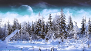 Зимняя охота в сибирской тайге (СИ)